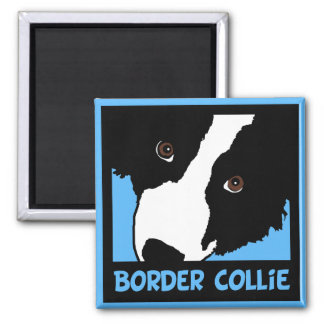 Border Collie Watching Ewe (You) Square Magnet