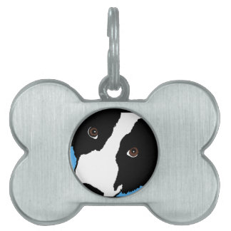 border collie watching you ewe pet ID tag