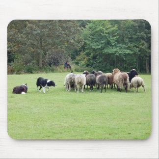 Border Collie working Mouse Pad