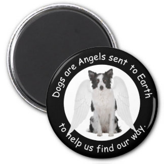 Border Collies Are Angels Magnet