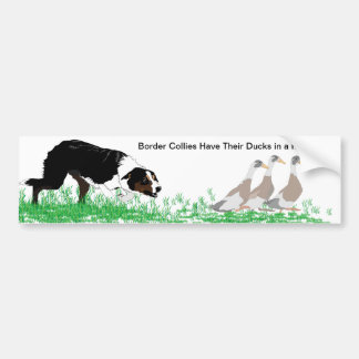 Border Collies Have Their Ducks in a Row Sticker Bumper Sticker