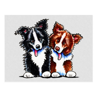 Border Collies Little League Postcard