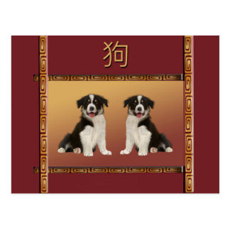 Border Collies on Asian Design Chinese New Year Postcard