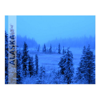 Border for your Alaskan Vacation Photo Postcard