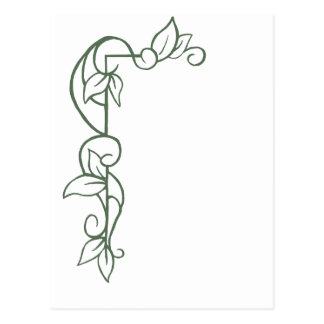 Border Leaves and Vines Postcard