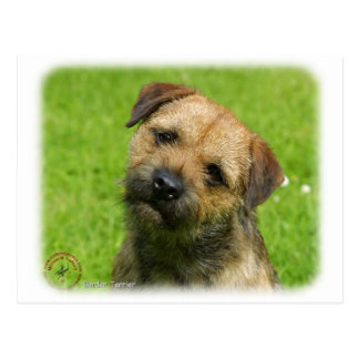 Border Terrier 9W009D-127 Postcard