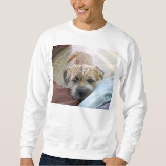 border terrier begging sweatshirt
