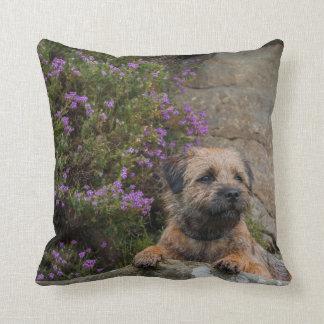 Border Terrier Dog In Wild Heather Throw Pillow