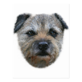 Border Terrier dog Postcard