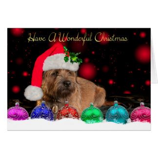 Border Terrier In Santa Hat Christmas Card