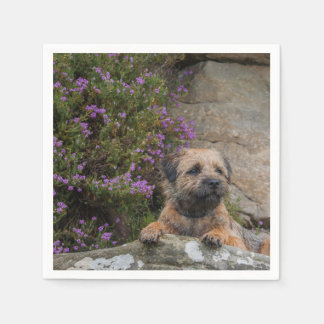 Border Terrier Paper Napkins