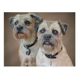 Border Terrier Postcard