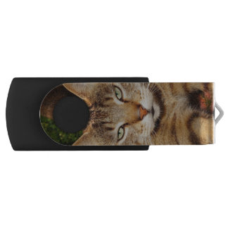 Bored Kitty Cat USB Flash Drive
