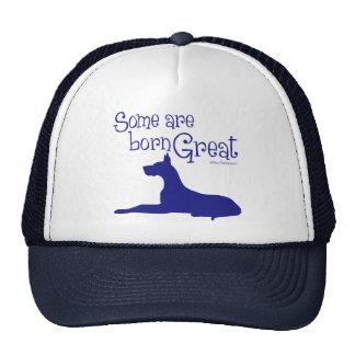 Born Great, navy Trucker Hat
