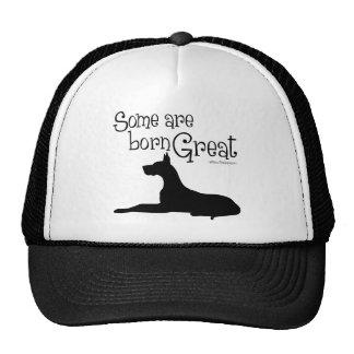 Born Great Trucker Hat