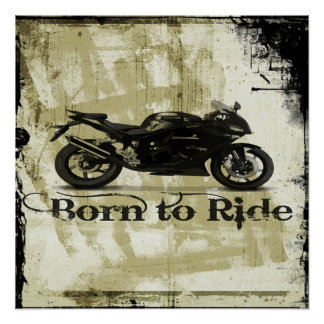 Born To Ride Perfect Poster