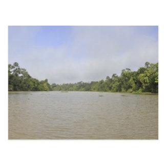 Borneo Island, Malaysia, panoramic view Postcard