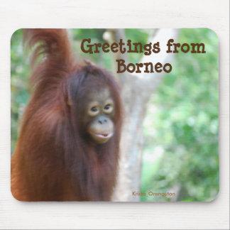 Borneo Jungle Travel Mouse Pad