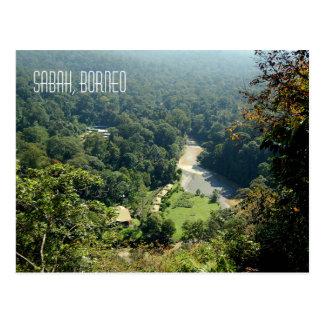Borneo Rainforest Jungle Aerial View Photograph Postcard