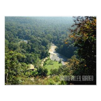Borneo Rainforest Jungle Danum Valley Photograph