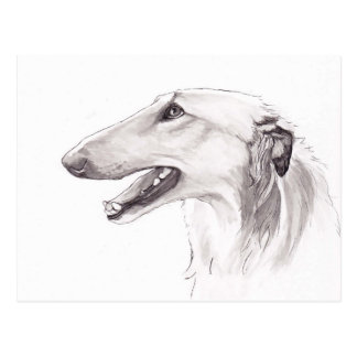 Borzoi Dog Art Ink Head Profile Postcard