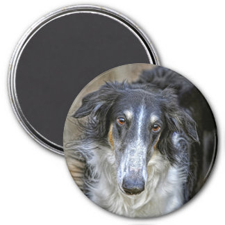 Borzoi Rescue Dog Magnet