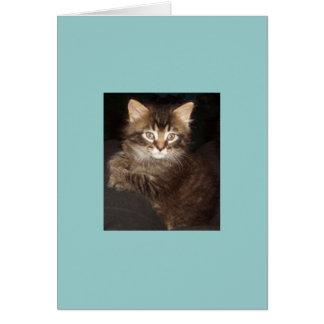 Bosco Card