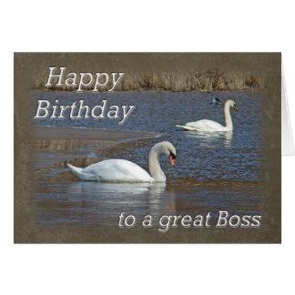 Boss Birthday - Mute Swans on Winter Pond Greeting Card