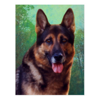 Boss the German Shepherd Postcard