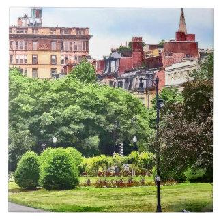 Boston MA - Relaxing In Boston Public Garden Tile