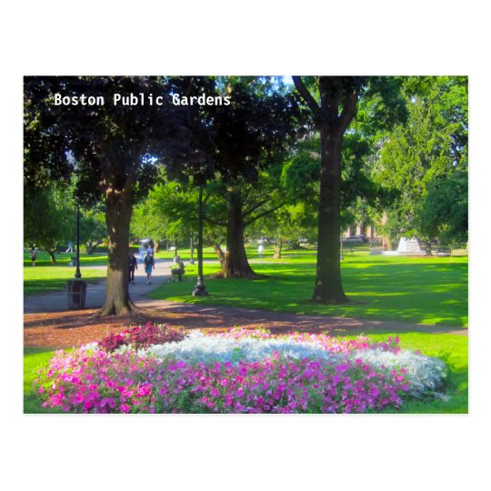 Boston Public Gardens Postcards