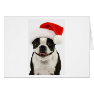 Boston Santa Note Card