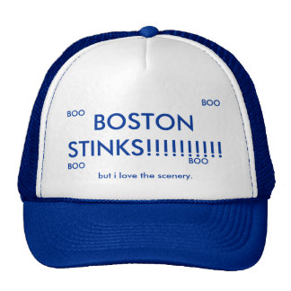 BOSTON STINKS!!!!!!!!!!, but i love the scenery... Trucker Hat
