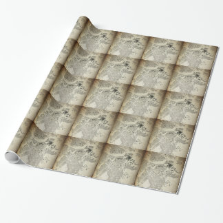 Boston Streets and Buildings Map Antic Vintage Wrapping Paper