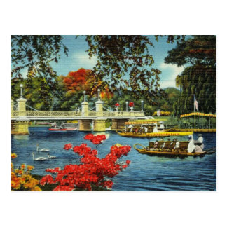 Boston Swan Boats Postcard