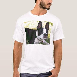 boston-terrier-1 T-Shirt