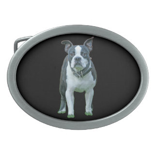 Boston terrier  1b belt buckle