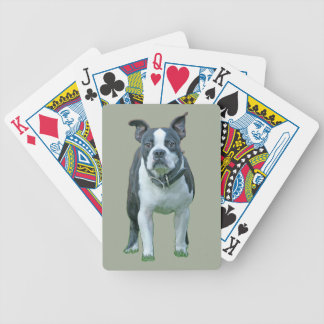 Boston terrier  1b bicycle playing cards