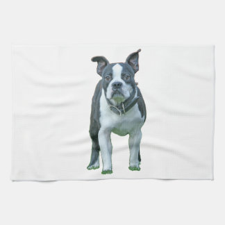 Boston terrier  1b hand towel