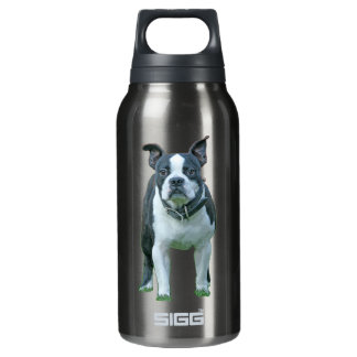 Boston terrier  1b insulated water bottle