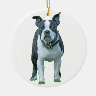 Boston terrier  1b round ceramic ornament