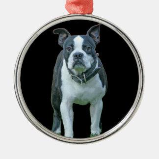 Boston terrier  1b Silver-Colored round ornament