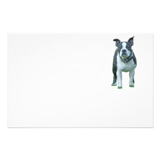 Boston terrier  1b stationery