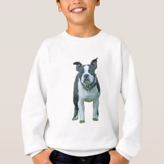 Boston terrier  1b sweatshirt