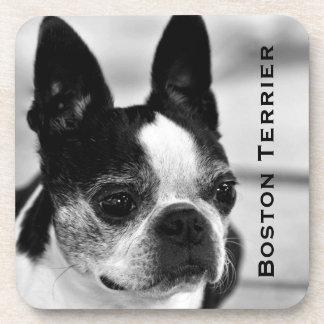 Boston Terrier Black and White Coasters