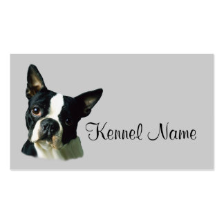 Boston Terrier Breeder Business Card