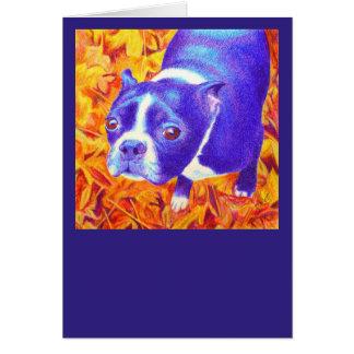 """Boston Terrier Card - """"Daisy"""""""