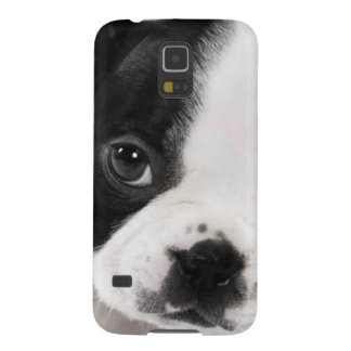 Boston Terrier Cases For Galaxy S5