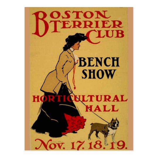 Boston Terrier Club Postcard