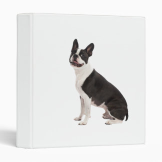 Boston Terrier dog beautiful photo album, binder